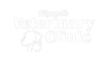 Cedarcrest Pet Hospital Logo