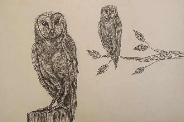 Past or present Twigs the owl | Ink