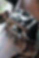 Indian_Wedding_Bride_Australia_photography_Sikh_Bride_Groom_weddings_tasveerweddingco_hannahk_Melbourne_GoldCoast_Brisbane_Sydney_Perth_CoffsHarbour_Adelaide_tasveer_female_photographer_cinematography_punjabi_dulhan_shaadi_mandap_sari_lengha_dupatta_gujarati_srilankan