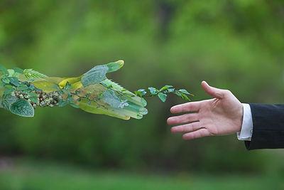 greenhands.jpg