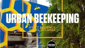 Chef Stories: Urban Beekeeping.  Chef Thomas McKeown, Atlanta