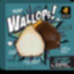 wallop_frnt_CA.png
