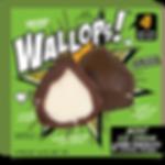 wallop_frnt_MC.png