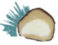 Coconut_FlavorPic.png