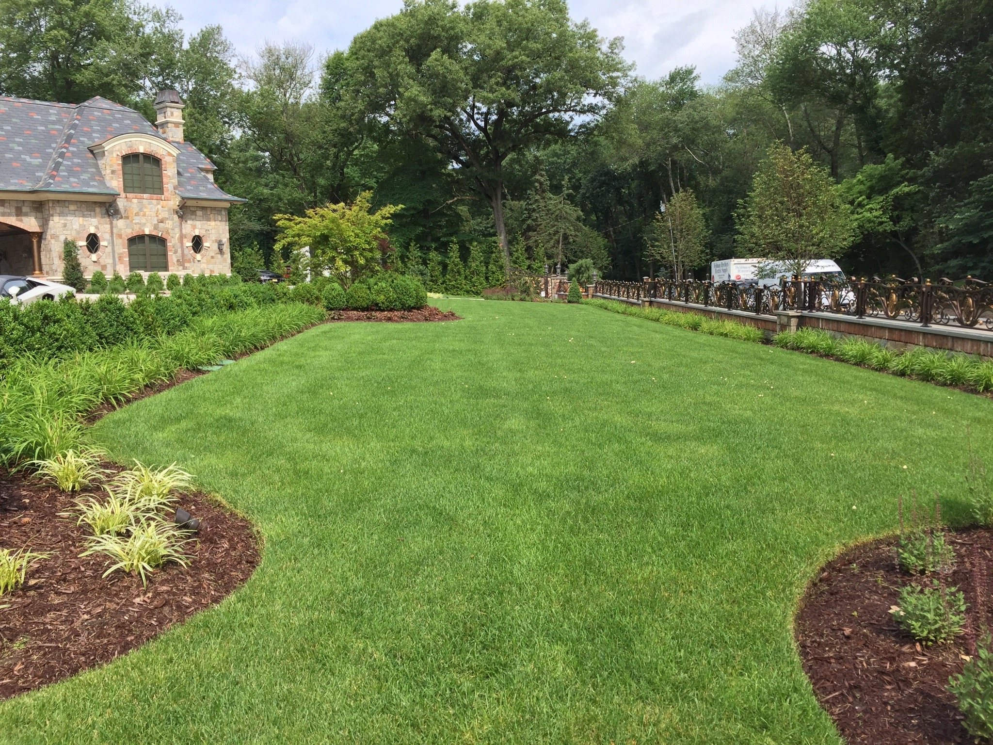 Lawn, Ornamental Tree & Shrub Care