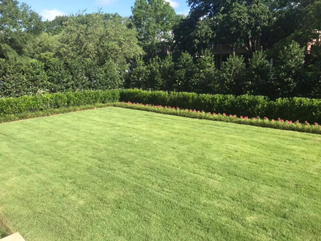 University Park Gardening