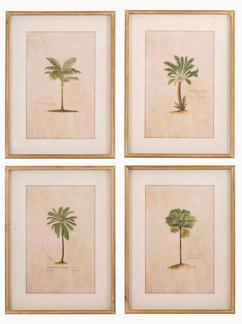 Tropical Palm Tree Wall Art Set of 4