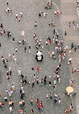people-gathered-watching-a-panda-mascot-
