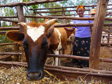Kenyan Woman's Finance Trust