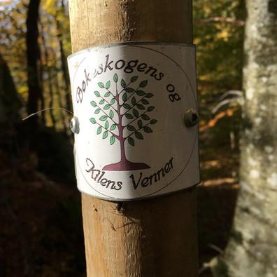 Hiking trail Bøkeskogen