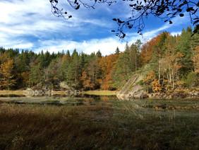 Lake Farris