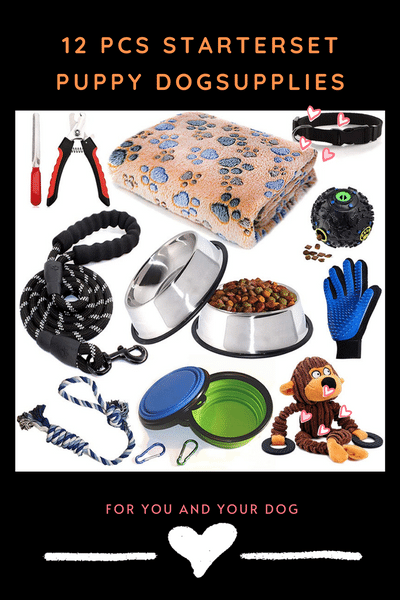 Puppy Set: Dog Toys / Dog Blanket / Puppy Training Supplies / Dog Grooming Tool / Dog Leashes.png