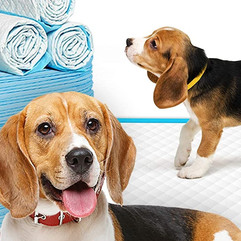Disposable Puppy Pee Pads