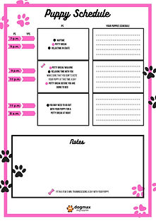 DM puppy schedule  pink 2.jpg