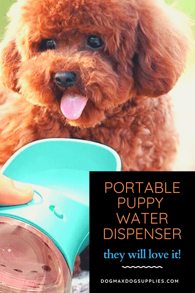 Water Bottle for Puppy and Dog Outdoor W