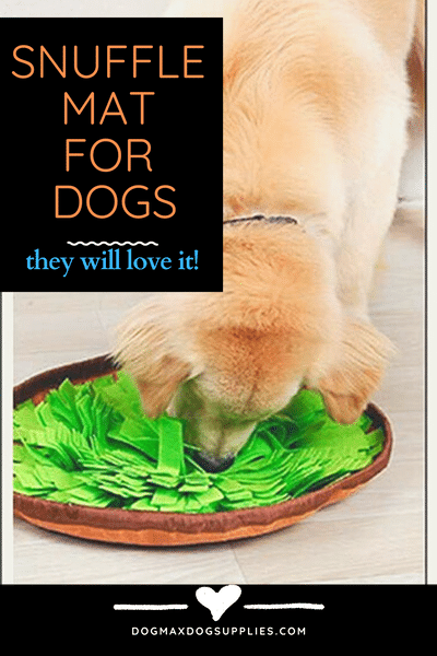 Snuffle mat dogs - Interactive Feed Game -  for Boredom - Dog - Puppy - Amazon - AWOOF.png