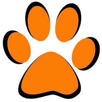 dogmax dog dogsupplies paw review blog.png