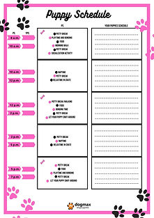 DM Puppy Schedule pink 1.jpg