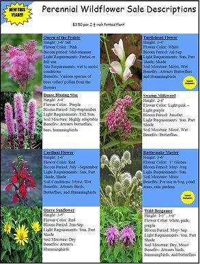 Perennial Wildflower Sale Descriptions.J