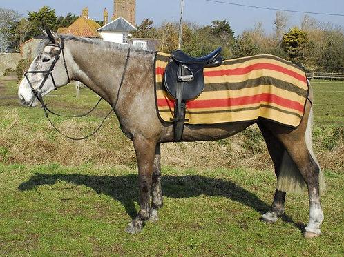Rhinegold Newmarket Stripe 3/4 Wool Ride-On Rug