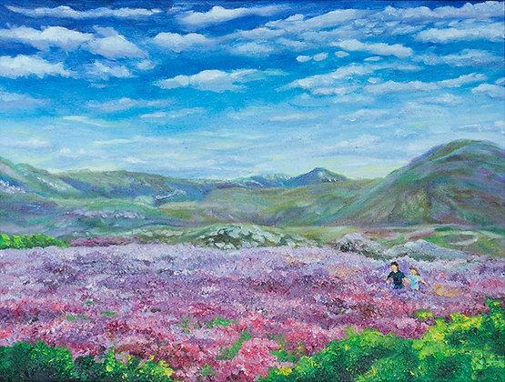 Dream of Scottish Heather by TK Chan