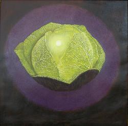 Yellow Cabbage