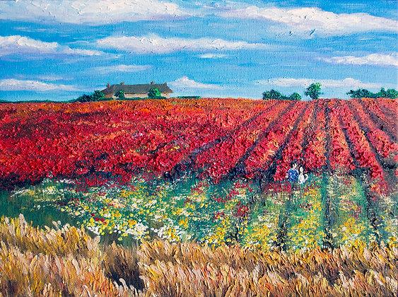 Dream of Poppy Flowers by TK Chan