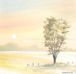 2 Summer Meadow