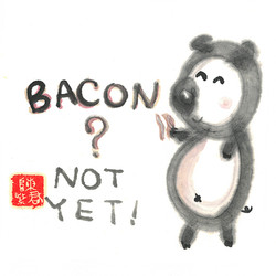 Bacon ? Not Yet !