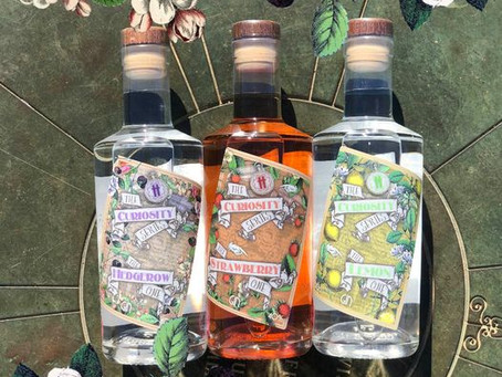 The curiosity series: Which gin is for me?