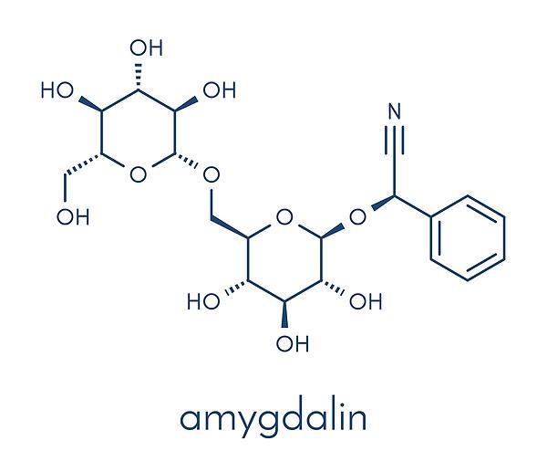 Amygdalin-Vitamin_B17_Infusion-Hyperther