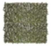 leavesbackdrop.jpg