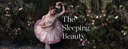 The Sleeping Beauty (2015)