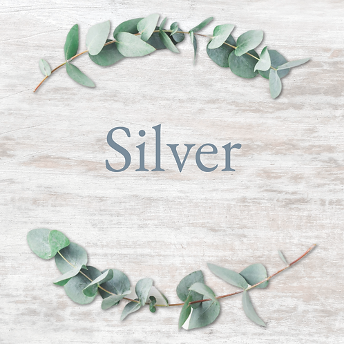 Silver Logo Package
