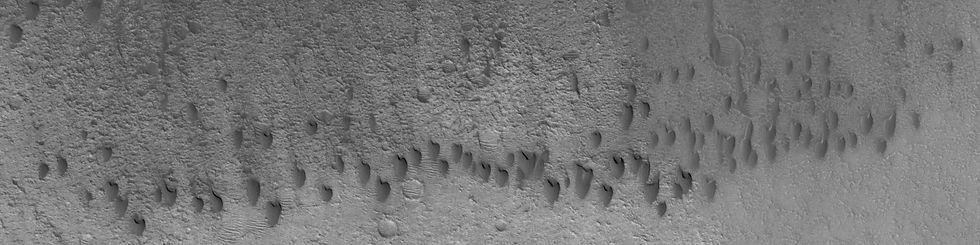 dune_1102.jpg