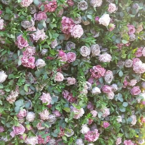 Epic Walls_Garden_Video