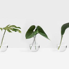 Outils de productivité: et si on restait minimaliste