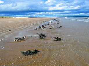 west-sands.jpg
