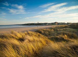 St-Andrews-West-Sands-Beach-Dunes-Grasse