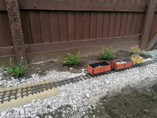 Day 3: Sefton Planting
