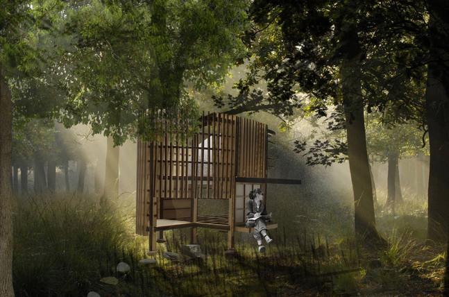 forest visual.jpg