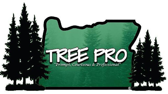 Company logo, Tree Pro, Prompt, courteous and professonal, trees