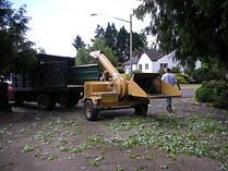 chipper, cipping, brush clean up, Tree Pro, eugene