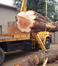 tree removal, fire clearance, crane, crane truck, log truck, lift, removal