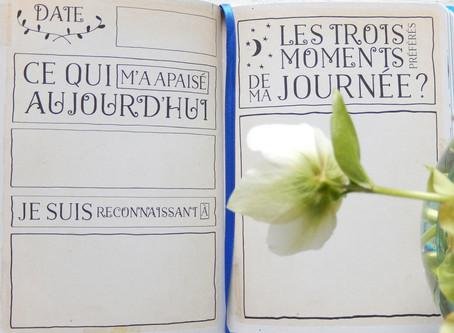 Tenez un Journal de Gratitude (ou un carnet de kifs)