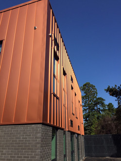 Copper cladding and Blue Sky.jpg
