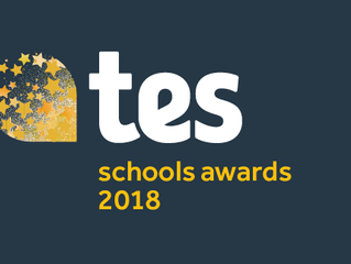 TES School awards 2018 - Brookside Academy