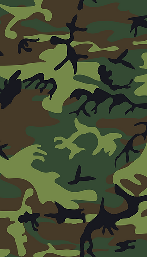 camouflage-33708_1280.png