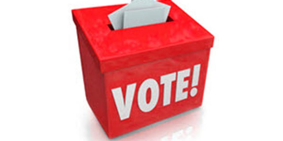 LWV Monthly Program: The Vote