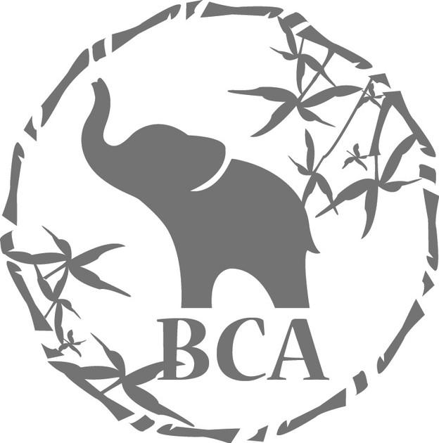BCA Edited Gray Logo.jpg
